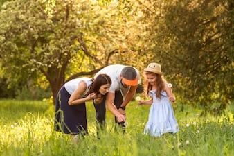 Семья, глядя на цветок одуванчика в саду