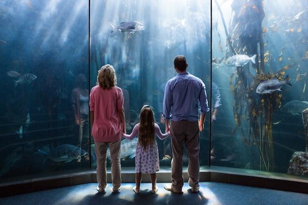 Family looking  at fish tank