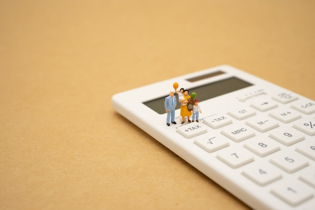Family miniature people pay queue annual income (tax) for the year