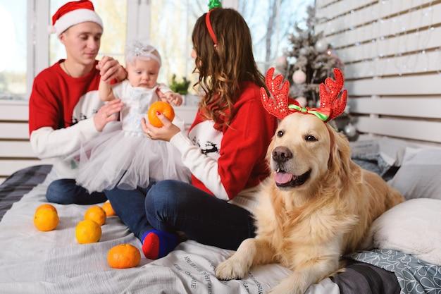 家族-クリスマスセーターのお母さん、お父さんと小さな娘