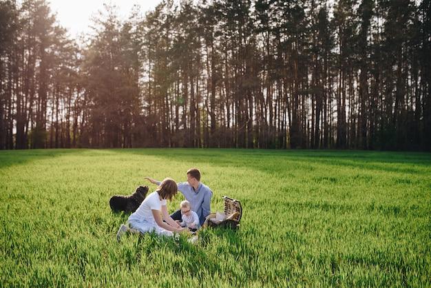 森の中のピクニックに家族。牧草地で。食物と一緒にピクニックバスケット。犬は走り、遊びたがっています。メガネの子。服の青い色。屋外で食べること。家族との時間。