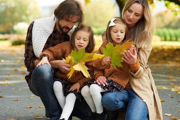 秋の公園で葉を摘む家族
