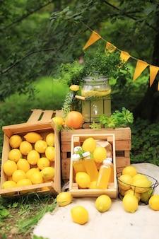 Семейный пикник на открытом воздухе летом с лимонами и лимонадом. яркая фотозона