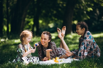 Family picnic with fruit and bubbles
