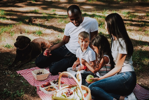 Family picnicking together in park brown labrador