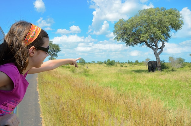 Family safari vacation in africa, child in car looking at elephant in savannah, kruger national park