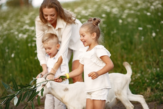 가족은 마을에서 휴가를 보냅니다. 소년과 소녀는 자연에서 연주. 사람들은 신선한 공기 속에서 걷는다.