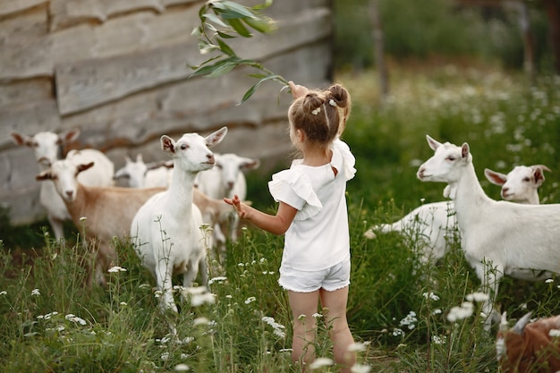 가족은 마을에서 휴가를 보냅니다. 자연에서 노는 아이. 사람들은 신선한 공기 속에서 걷는다.