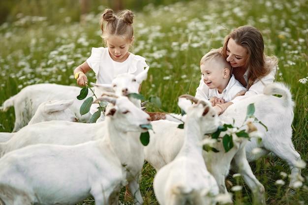 가족은 마을에서 휴가를 보냅니다.