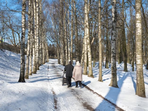 겨울 공원에서 유모차와 가족. 자작 나무 골목. 겨울 숲에서 가족 산책