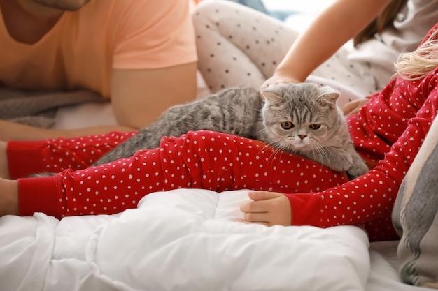 집에서 침대에 귀여운 고양이와 가족