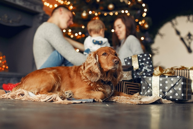 Семья с милой собакой дома возле елки