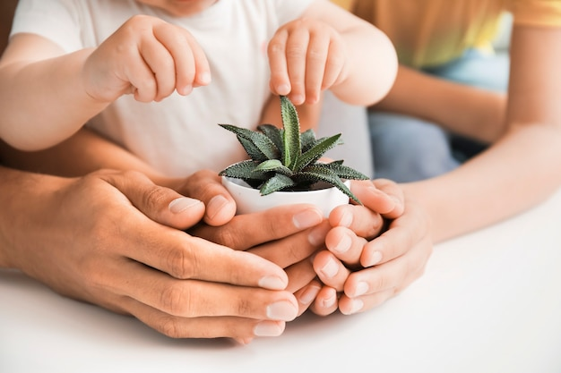 테이블에 관엽 식물과 가족