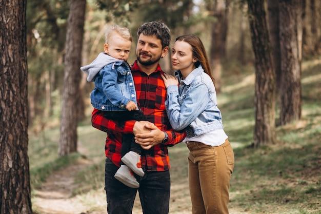 Семья с маленьким сыном вместе в лесу