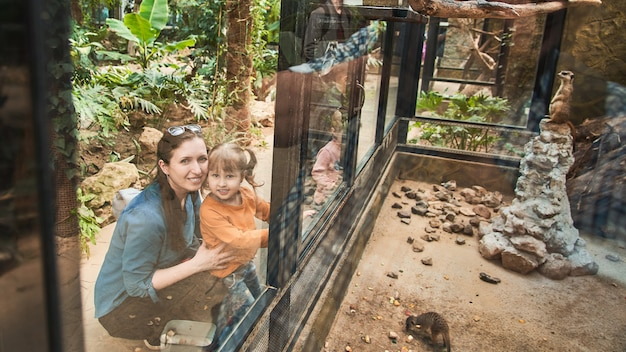 The family at the zoo look at the animals through a safety glass