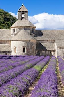 Famosa abbazia di senanque. francia.