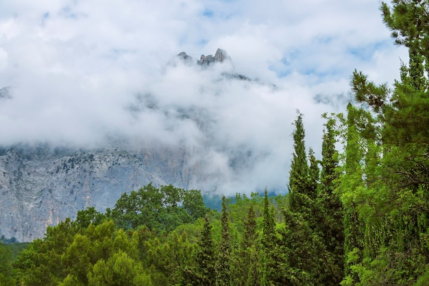 The famous ai petri mountain is covered with clouds