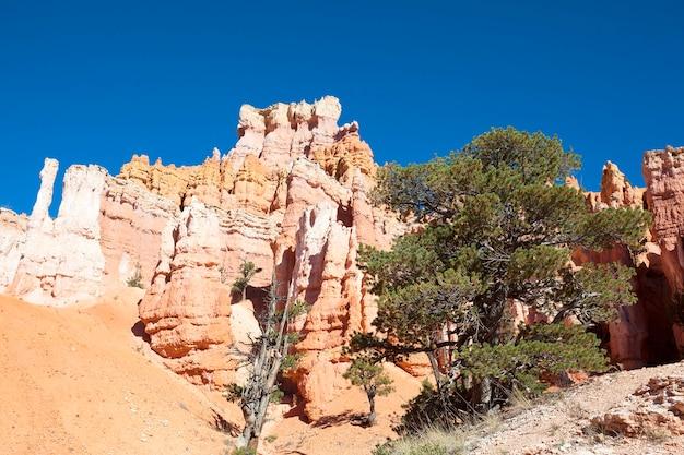 Sul famoso sentiero navajo nel bryce canyon, usa