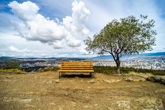 Знаменитое место с деревьями и скамейкой на смотровой площадке над черепашьим озером в тбилиси, грузия