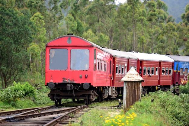 Famous train ride in ella, sri lanka