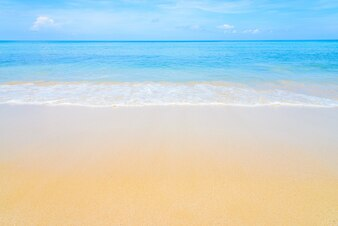 Seashore Vectors, Photos and PSD files