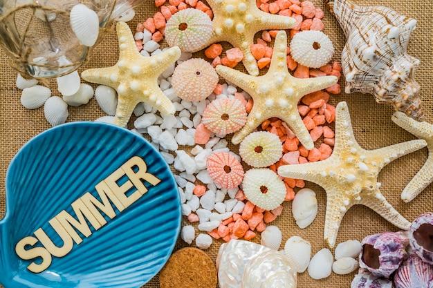 여름 장식 요소와 환상적인 구성