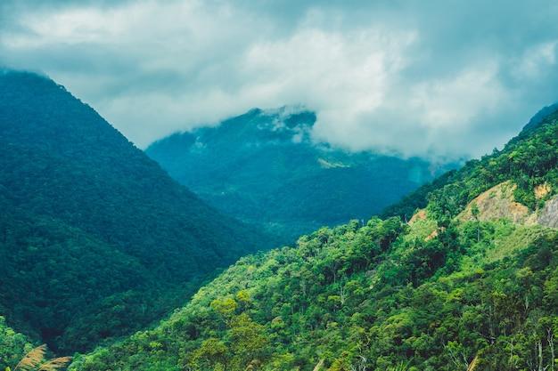 森と山々の素晴らしい風景ダラットベトナム雰囲気の鮮度と標高