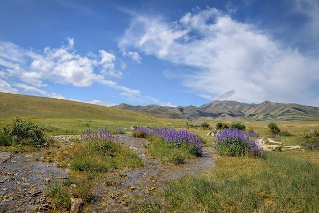 晴れた夏の日の素晴らしい山の風景。山と白い雲のある澄んだ空と川の近くに青い花を持つ植物。美しい自然の背景、壁紙。