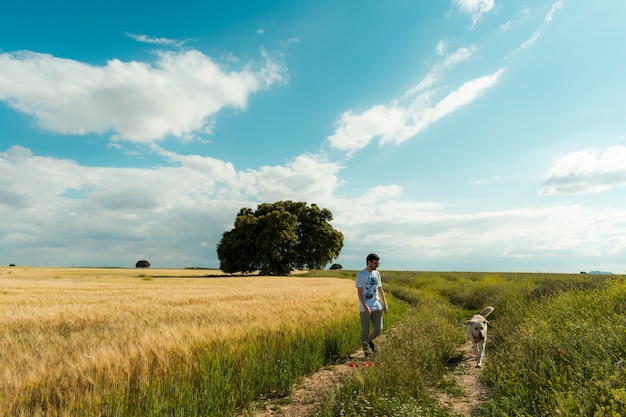 Fantastic spring landscape with one person and one dog
