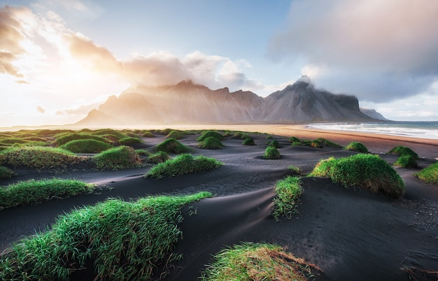 Fantatic west of the mountains and volcanic lava sand dunes on the beach stokksness, iceland. colorful summer morning iceland, europe