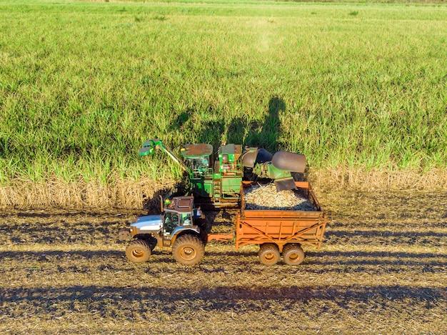 Farm tractors working on sugar cane harvest plantation aerial view.