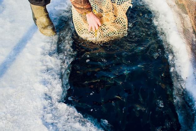 농장 송어 겨울 얼음 구멍 물고기 호수는 메이스를 잡기