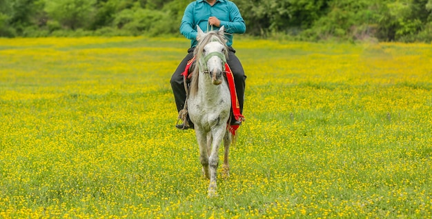 Farm worker horseriding in a farm zone with green grass and yellow flowers