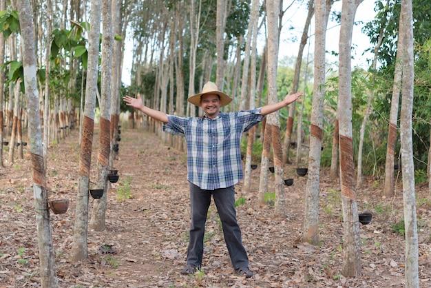 Фермер агроном плантация каучуковых деревьев
