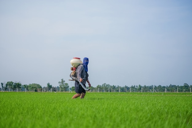 A farmer carrying a chemical fertilizer sprayer is walking in the field with blue sky