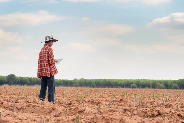 Farmer checking cassava field progress, holding tablet using internet.