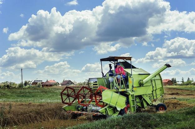 The farmer on the combine harvester is harvesting a grain. pidhiriya. ivano frankivsk state