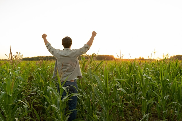 Farmer in a corn field raises his hands up his head raised to the sky enjoying his success