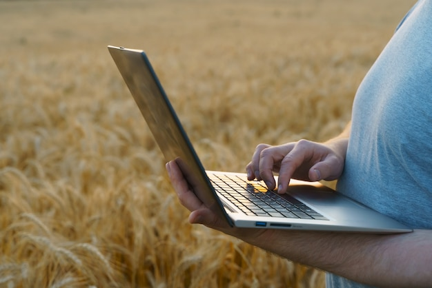 Farmer counts profits on a computer implementation of modern technologies in the agricultural