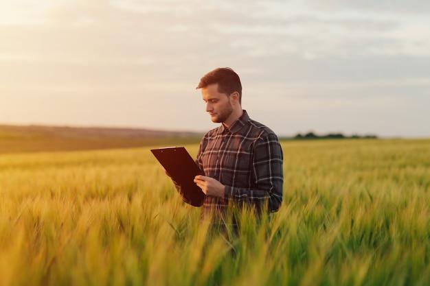 Фермер осматривает зерновые поля