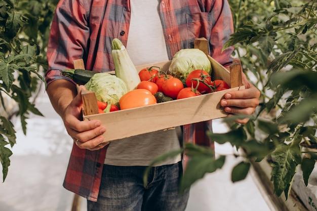 Contadino in serra con scatola di verdure