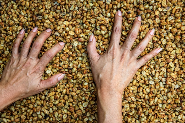 Farmer hands touching dry coffee beans background