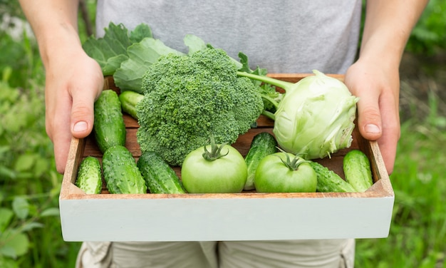 Farmer holding box with green organic vegetables.