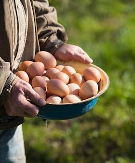 Фермер держит свежие органические яйца