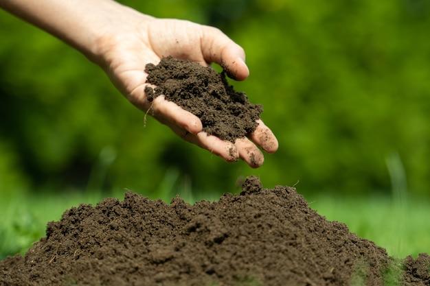 Фермер держит почву в руках женщина рука проверяет качество почвы концепции сельского хозяйства садоводства