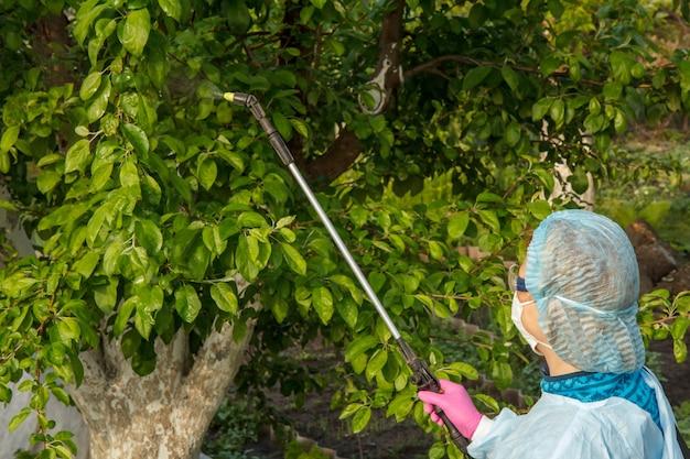 보호복을 입은 농부가 과수원에서 압력 분무기와 화학 물질로 곰팡이 질병이나 해충의 사과 나무를 뿌리고 있습니다.