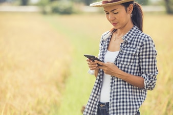 Farmer in rice field with smartphone