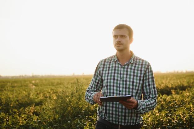 Фермер на соевых полях. рост, открытый.