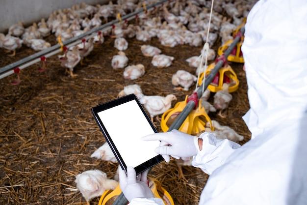 가금류 농장에서 태블릿 컴퓨터를 들고 생산과 식량 공급을 확인하는 살균된 옷을 입은 농부.