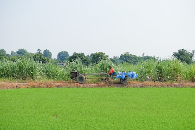 A farmer is driving a chemical fertilizer truck in the field.